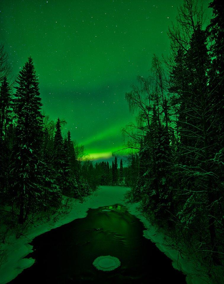 Aurora 11