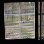 unelma-bedroom-09